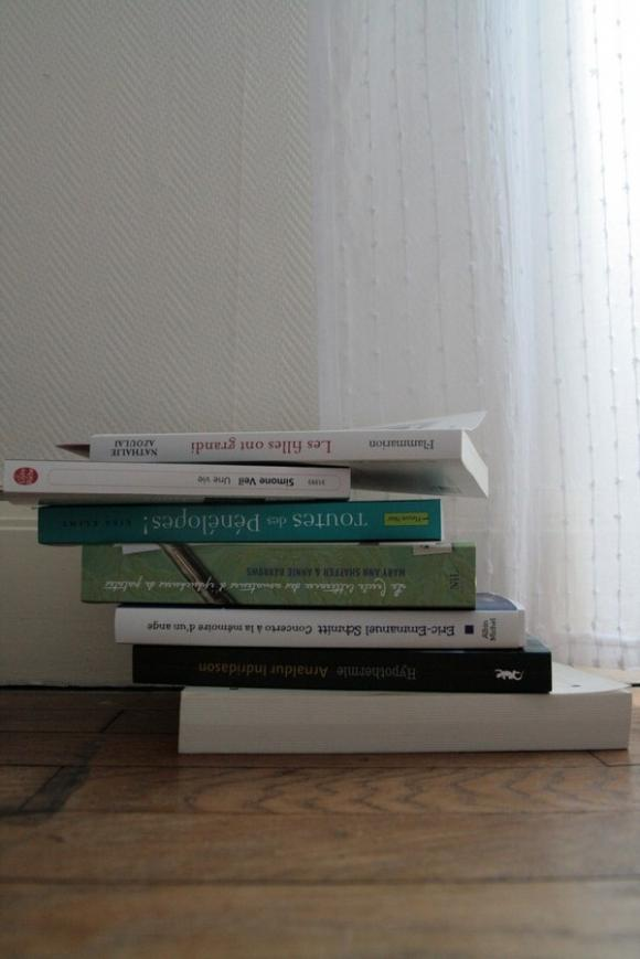 http://mes-lectures.cowblog.fr/images/IMG2665.jpg